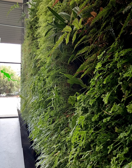 NaturaPacificGreenWall