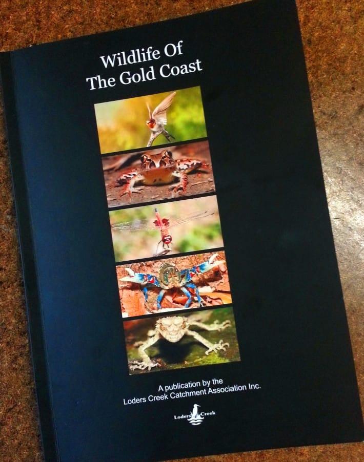 Wildlife of the Gold Coast