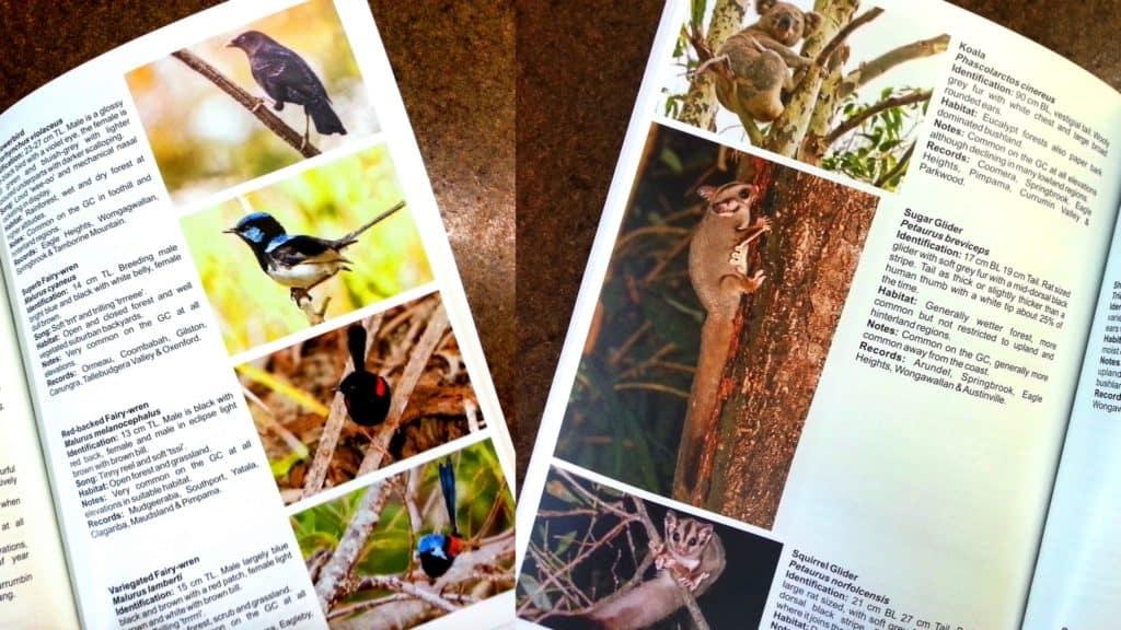 WildlifeBookCollage
