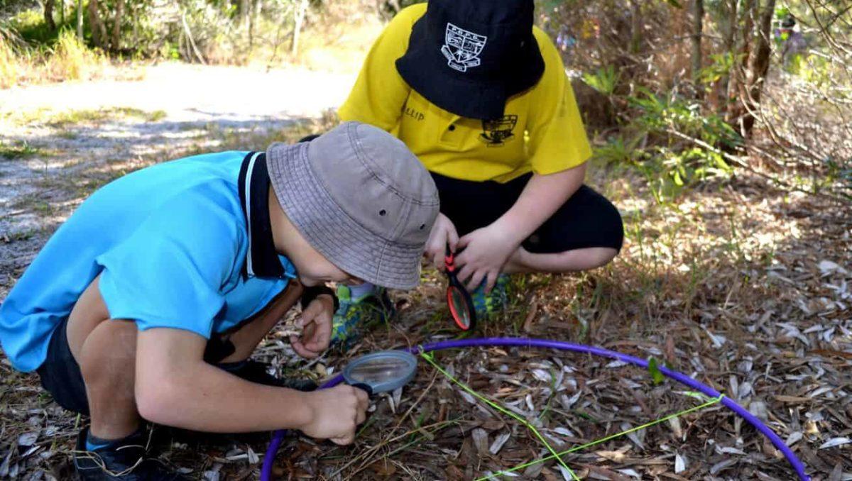 Environmental Education CSR