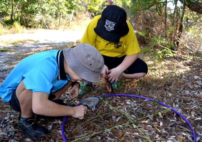 Natura Education: Environmental Heroes at Pottsville Beach Public School