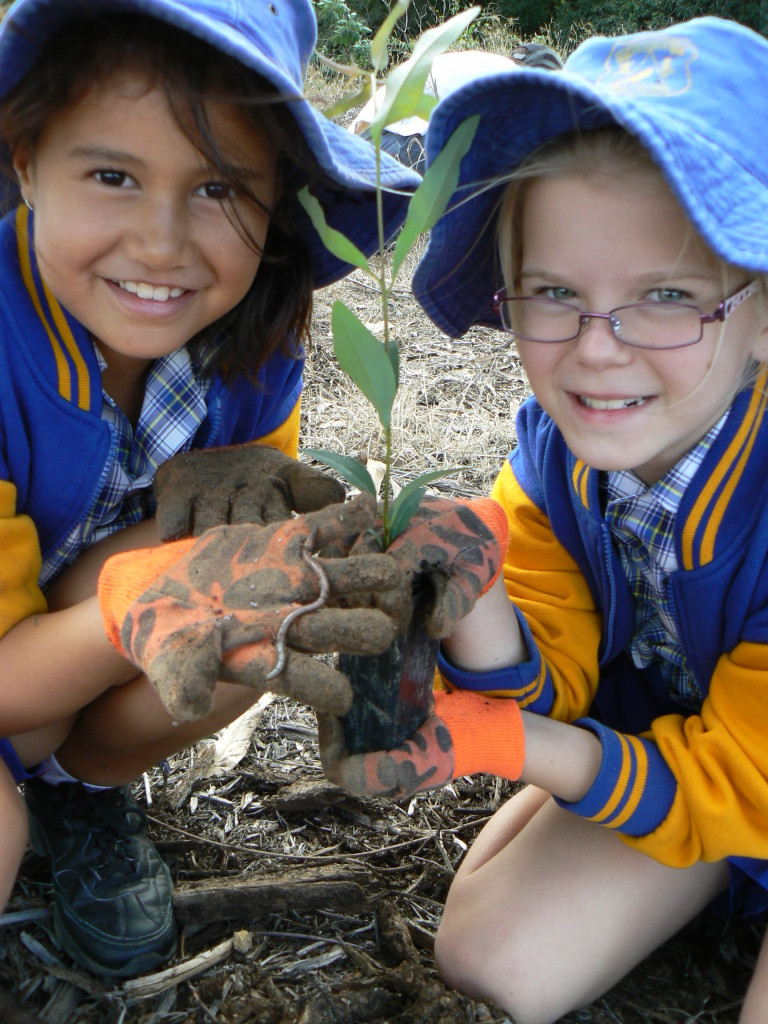 Primary school students planting new trees from the prison back into the wild