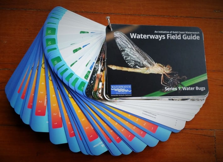 Waterways Field Guide Series 1: Water Bugs – A Fantastic New Resource for Teachers, Students and Scientists Alike!