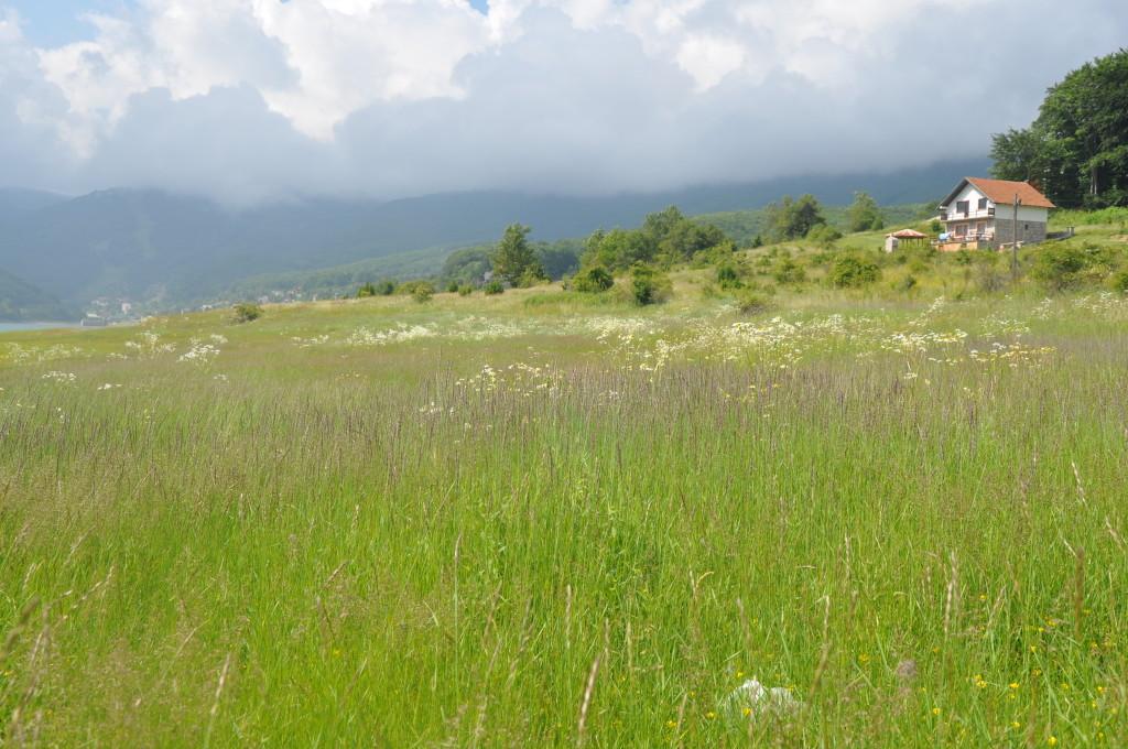 Traditionally-managed natural Limestone Grassland in Macedonia