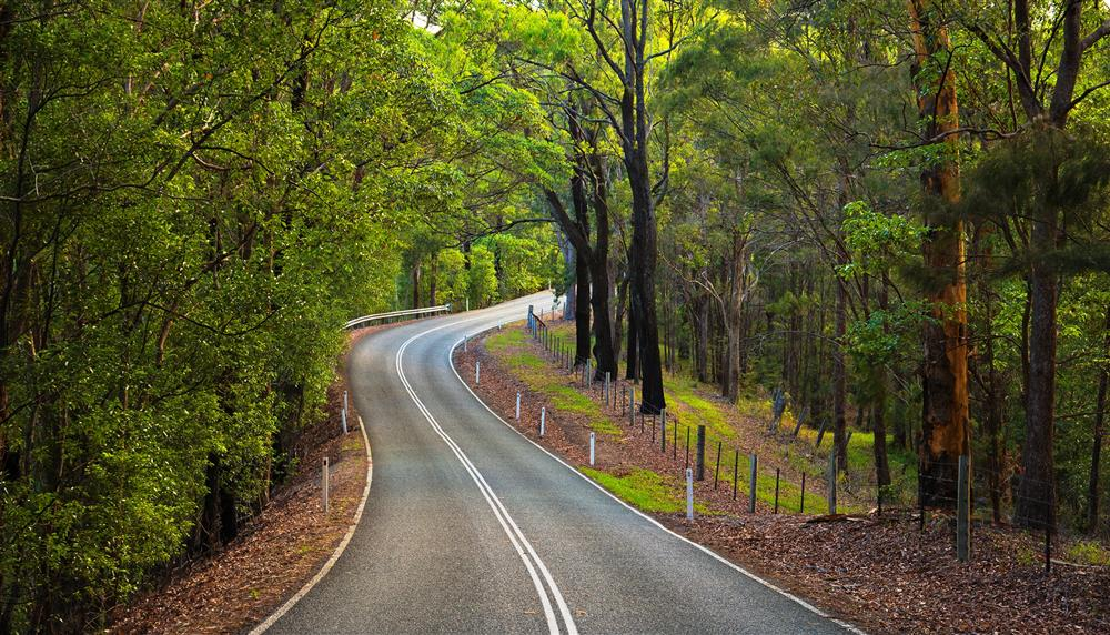 SouthernGoldCoastItineraryImage5-elfDriveCurrumbinValley