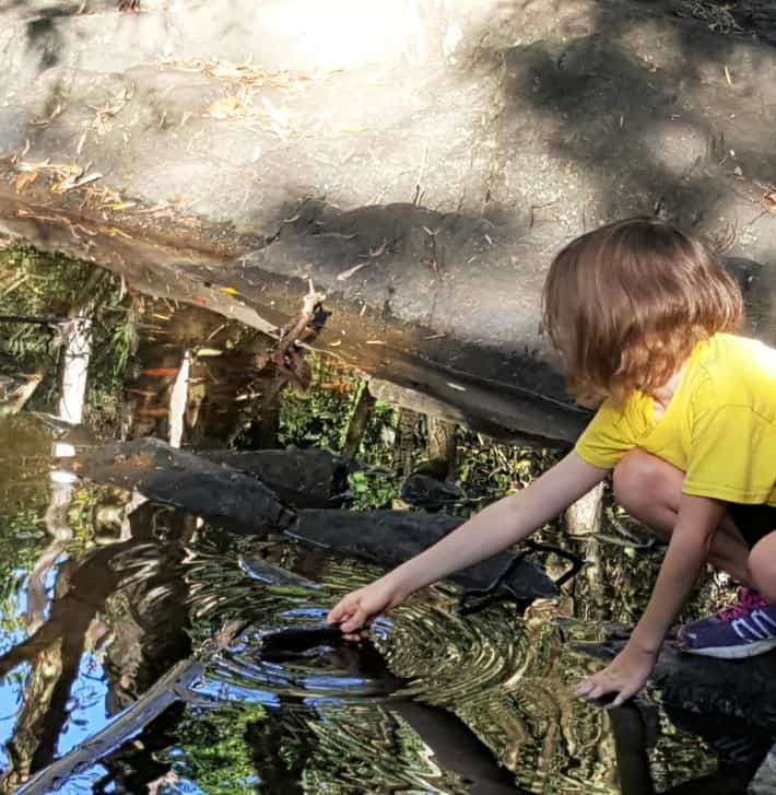 VIDEO: Kids in Nature – Making the most of your experience