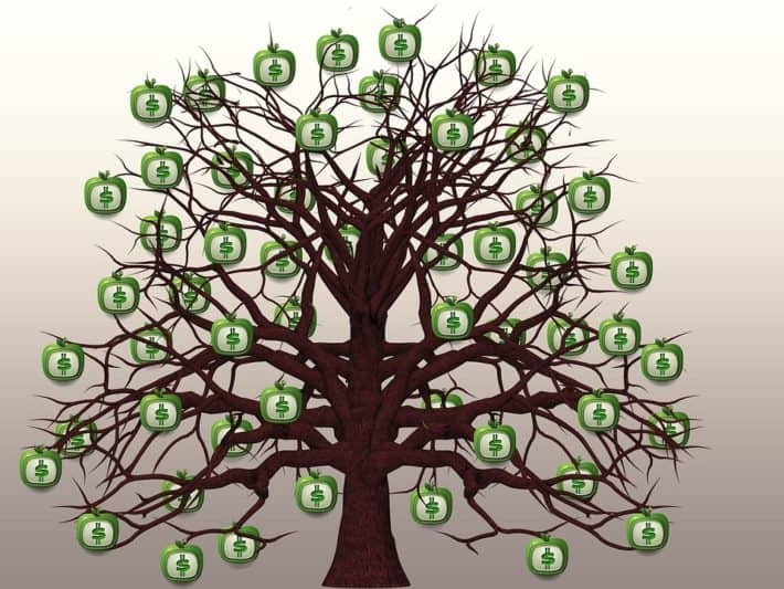 Money grows on trees – Measuring the $$ value of vegetation