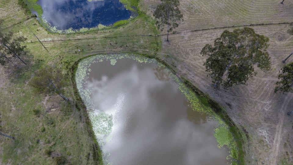 Natura Pacific Dairy Creek Rd DEA