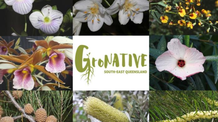 Botanical Bazaar & Gronative