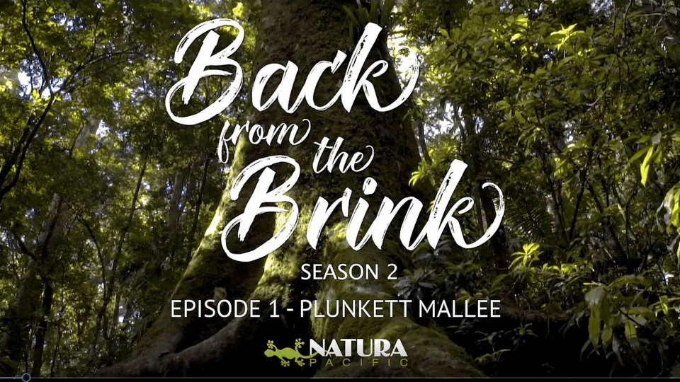 Back From The Brink Episode 1