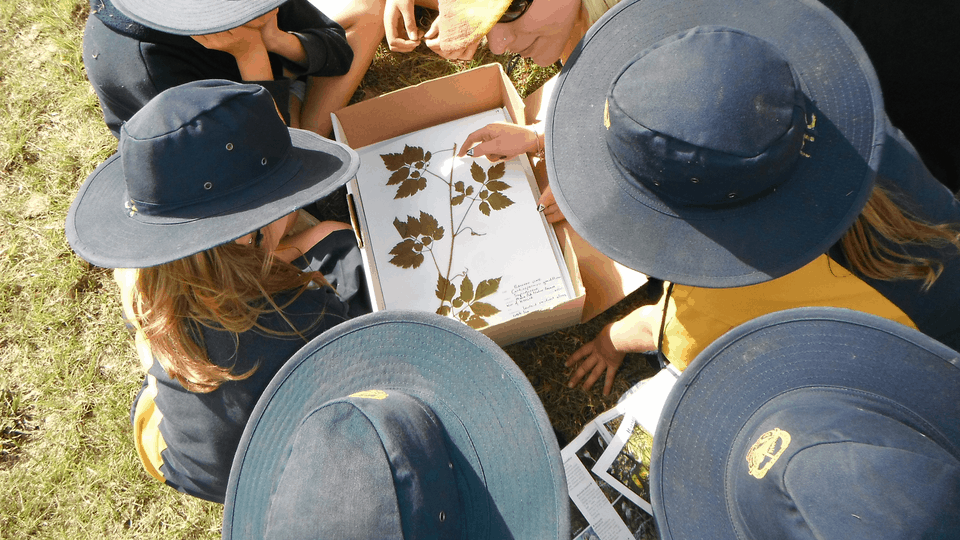 Nature Based Educ Programs