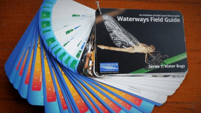 Waterways field guide
