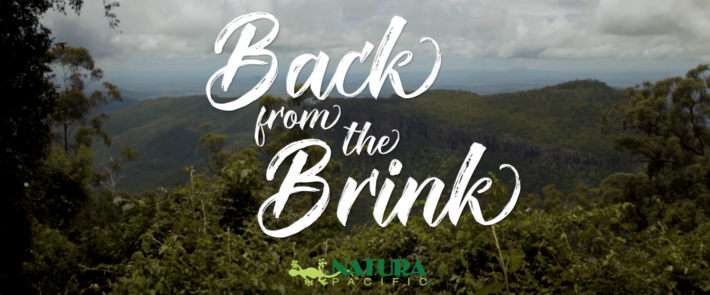VIDEO: Back from the Brink – 3-minute Film (2019 Wrap Up Special!)