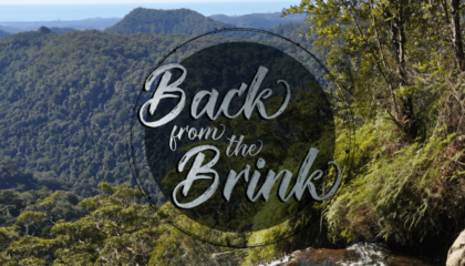 Natura Pacific Back from the Brink